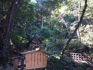 八重垣神社 裏山.jpg